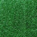Rental store for Green Turf in San Francisco CA